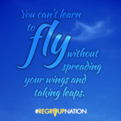 Learn to Fly Quote